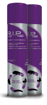 Dechra's household flea treatment R.I.P. Fleas Extra remains fully compliant for the UK & Norther Ireland