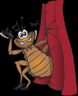 Peek a boo flea